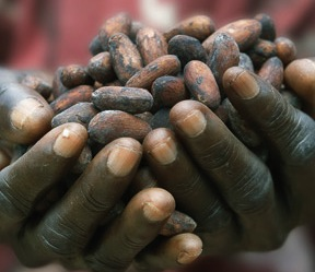 semi Fairtrade