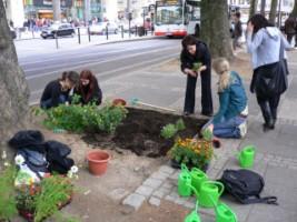 un'azione di guerrilla gardening