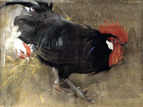 pollo: scheda tecnica e consigli di cucina - giornale del cibo - Come Cucinare Il Gallo