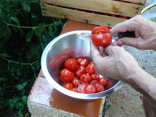 taglio dei pomodori per la passata