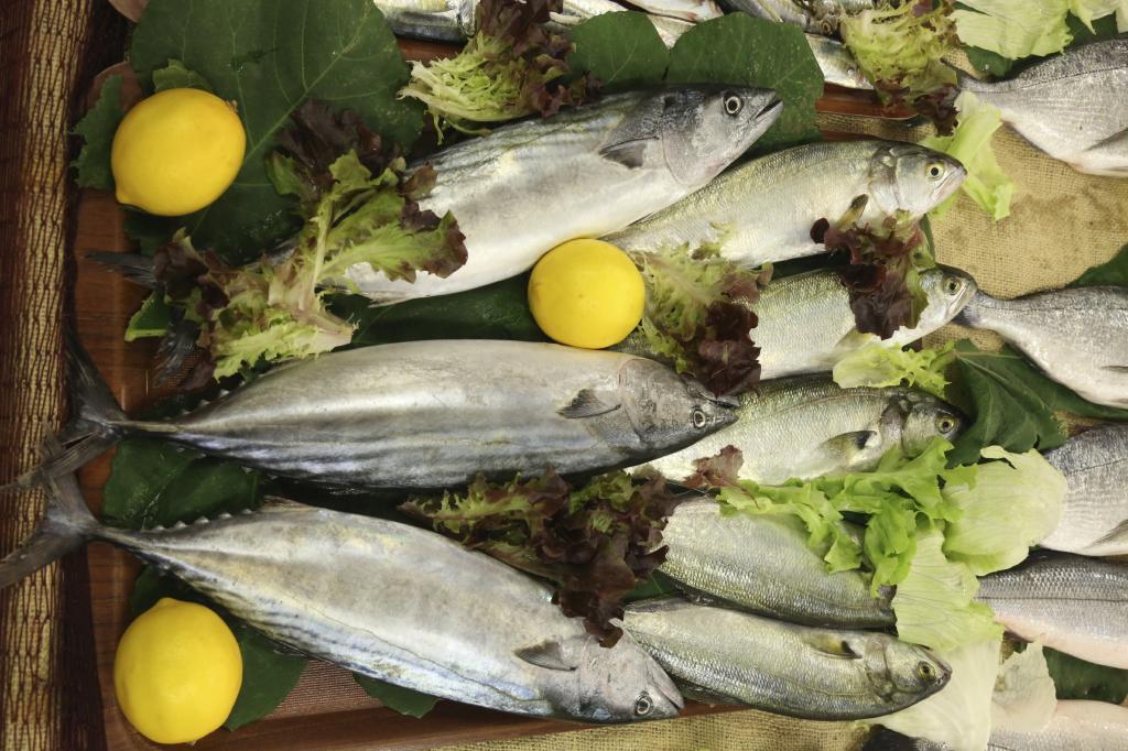 Pesci di aprile leccia for Comprare pesci