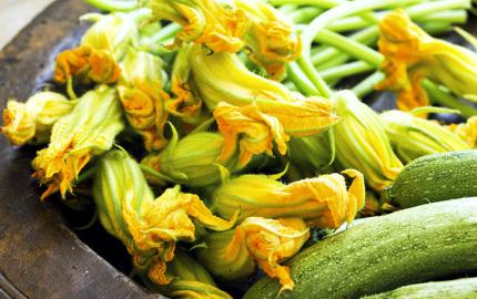5-deliziose-ricette-con-i-fiori-di-zucca