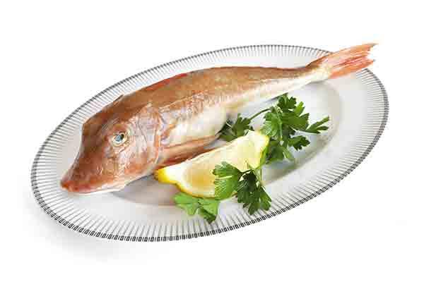 Pesce di ottobre ecco cosa comprare for Comprare pesci online