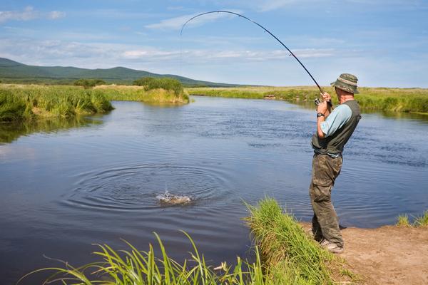 gambero killer pesca