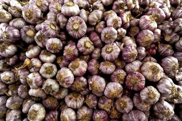 aglio di sulmona