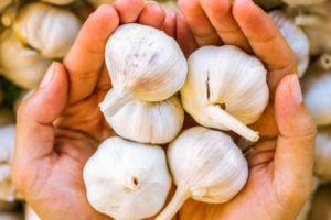 tipi di aglio