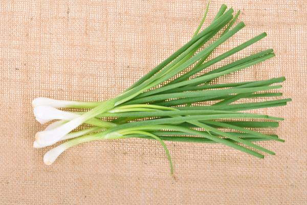 Tipi di cipolla la variet pi importanti in italia e for Semina cipolle