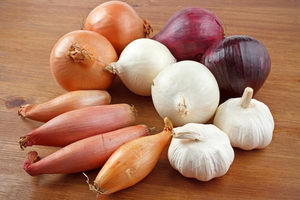 aglio scalogno cipolla