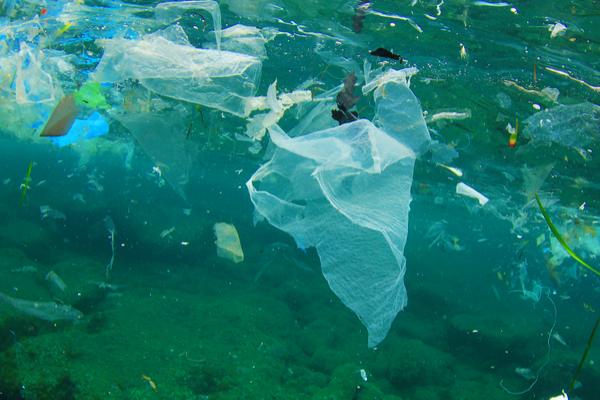 inquinamento plastica mare