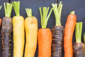 varietà di carote